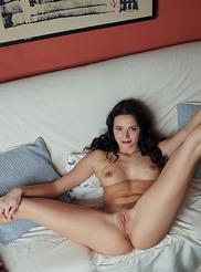 Ardelia A 18