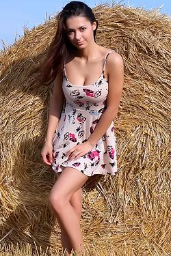 Helga Harvest